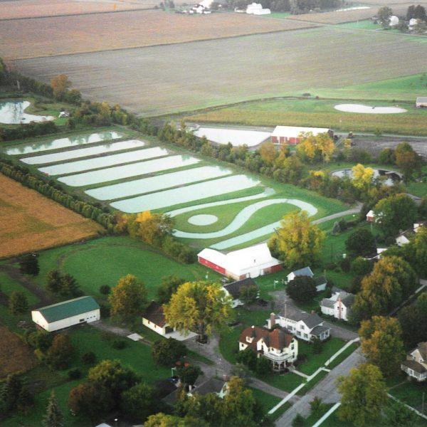 Fin Farm Aerial