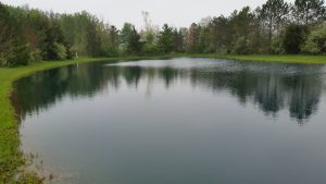 Fin Farm Pond Treatment