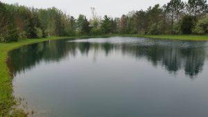 Fin Farm Pond Treatment